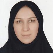 Elham_Shakibazadeh.png